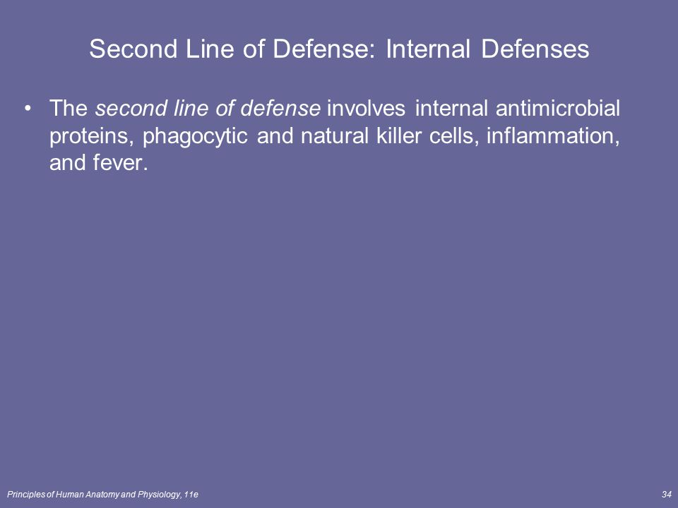 Second Line of Defense: Internal Defenses