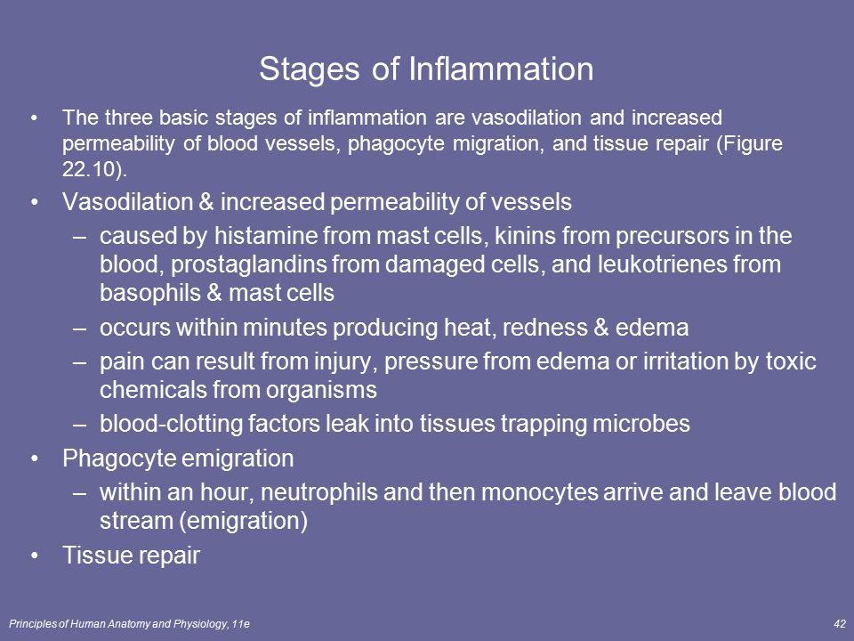 Stages of Inflammation