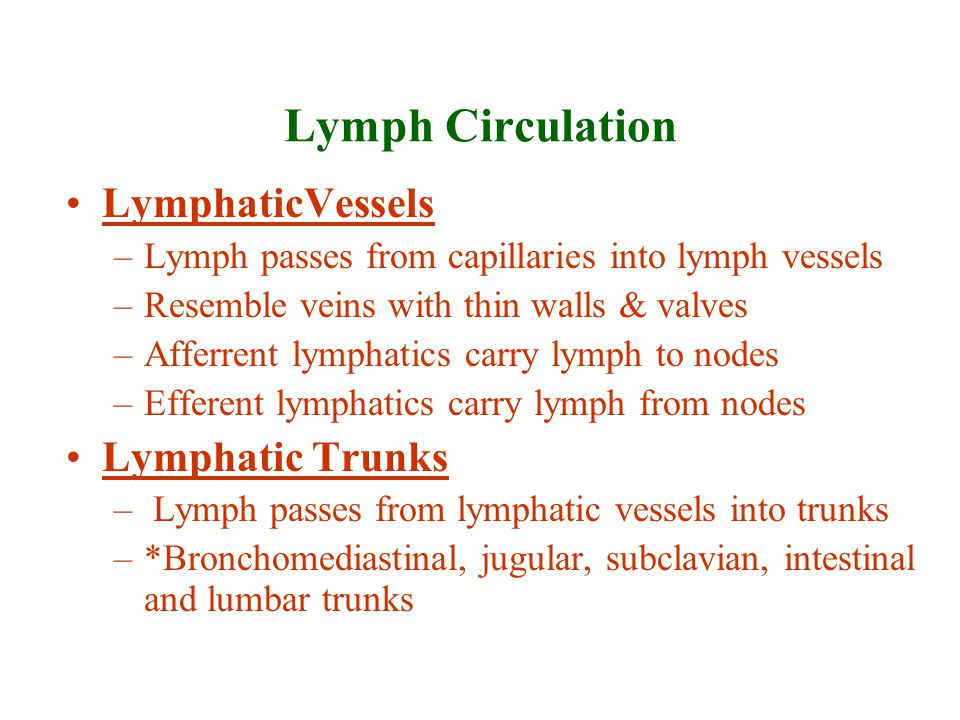 Lymph Circulation LymphaticVessels Lymphatic Trunks