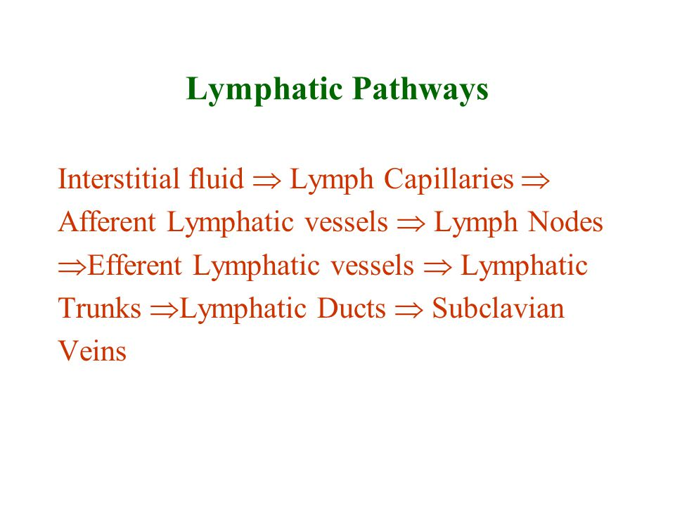 Lymphatic Pathways Interstitial fluid  Lymph Capillaries 