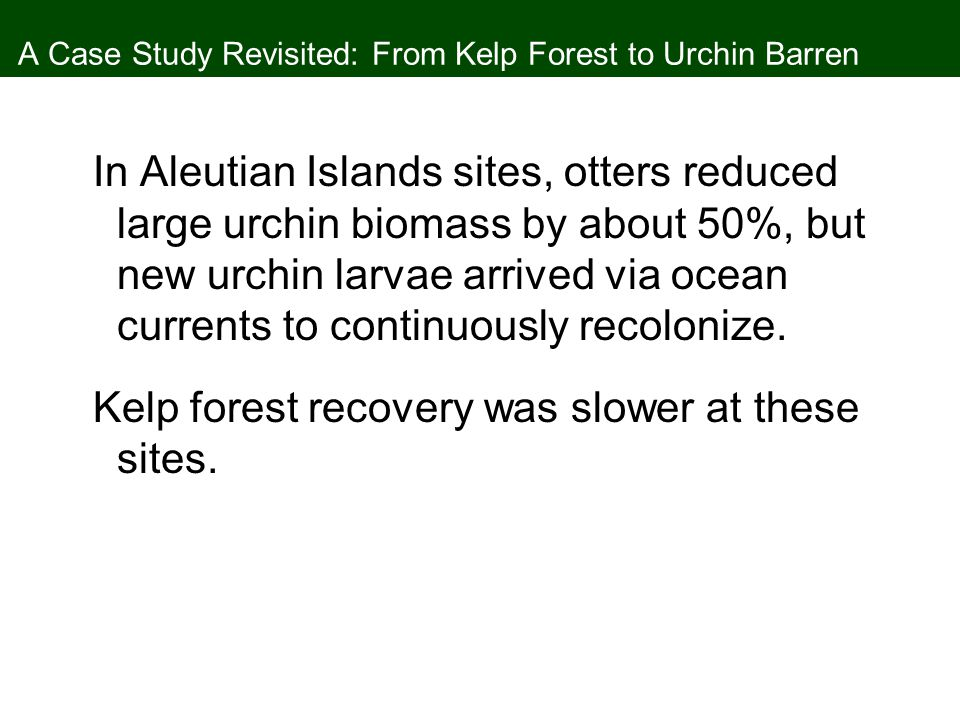 A Case Study Revisited: From Kelp Forest to Urchin Barren