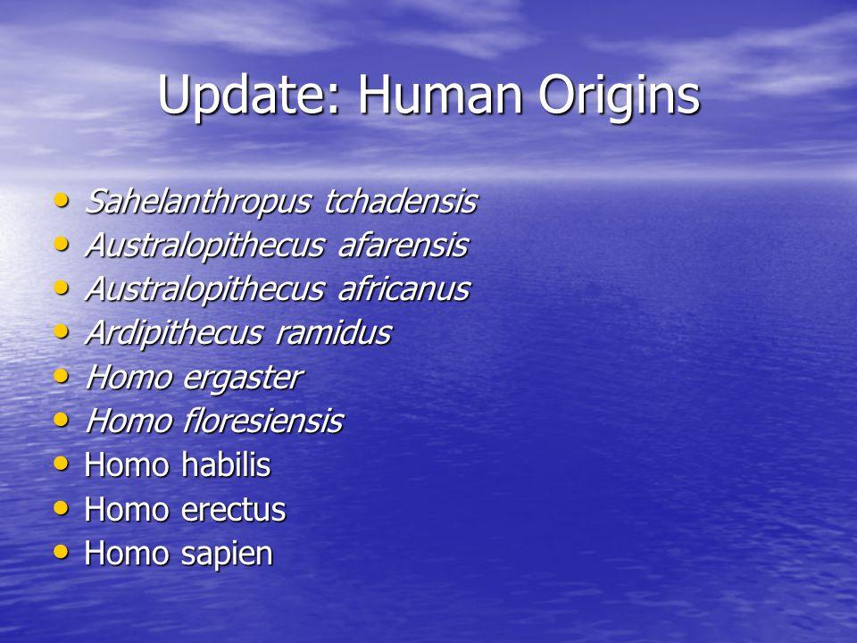 Update: Human Origins Sahelanthropus tchadensis