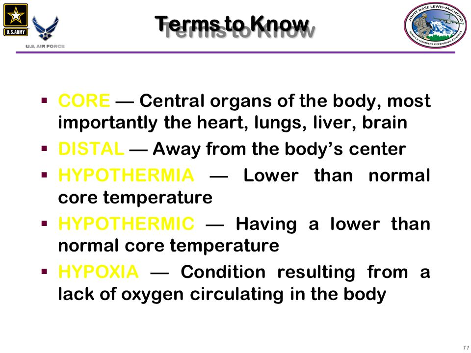 Terms to Know CORE — Central organs of the body, most importantly the heart, lungs, liver, brain. DISTAL — Away from the body's center.
