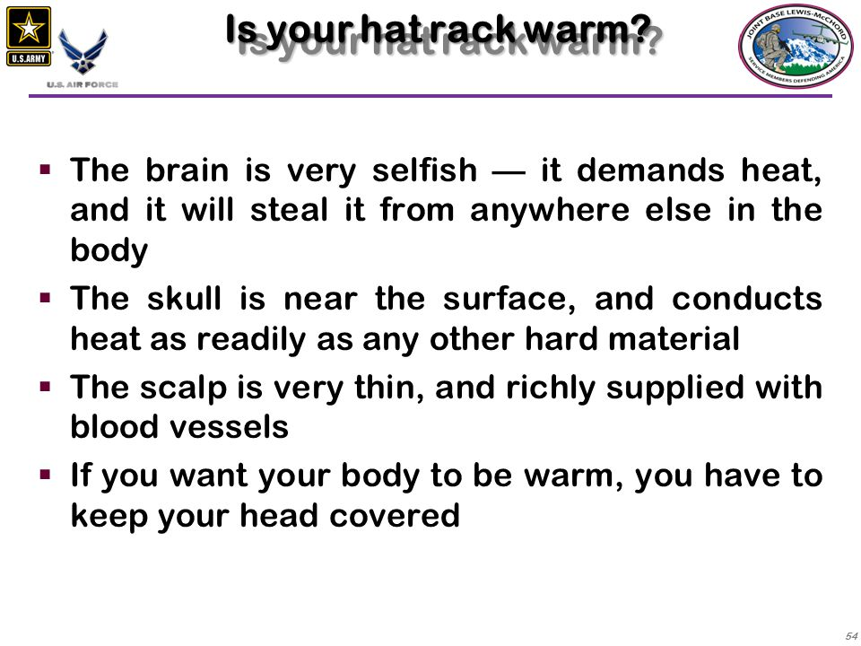 Is your hat rack warm The brain is very selfish — it demands heat, and it will steal it from anywhere else in the body.