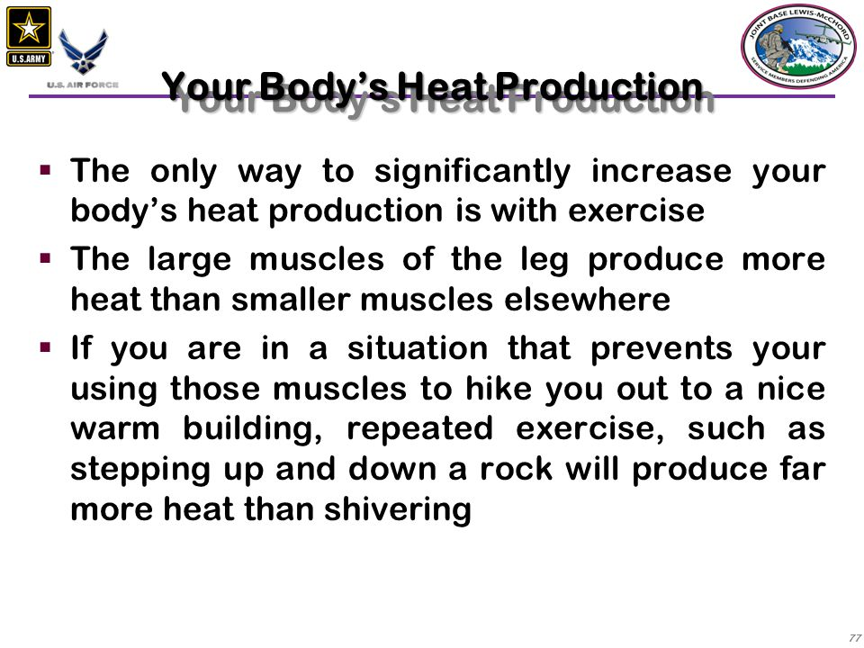 Your Body's Heat Production