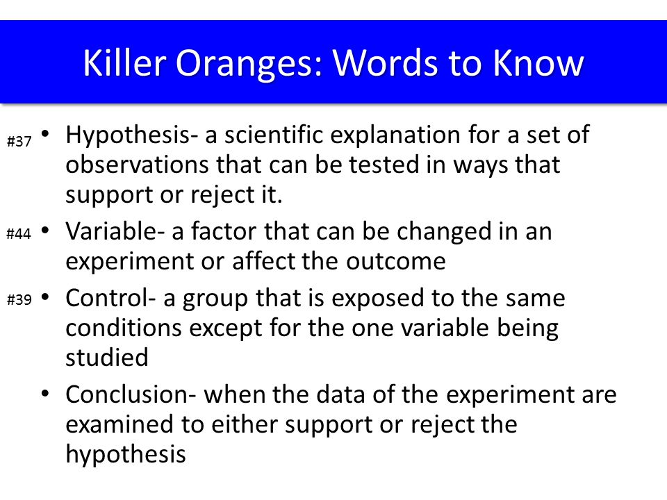 Killer Oranges: Words to Know