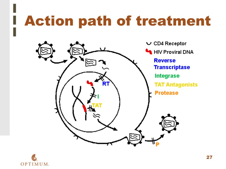 Action path of treatment