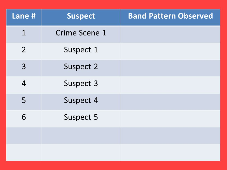 Lane # Suspect. Band Pattern Observed. 1. Crime Scene 1. 2. Suspect 1. 3. Suspect 2. 4. Suspect 3.