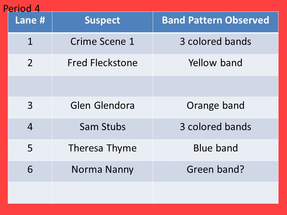 Period 4 Lane # Suspect. Band Pattern Observed. 1. Crime Scene 1. 3 colored bands. 2. Fred Fleckstone.