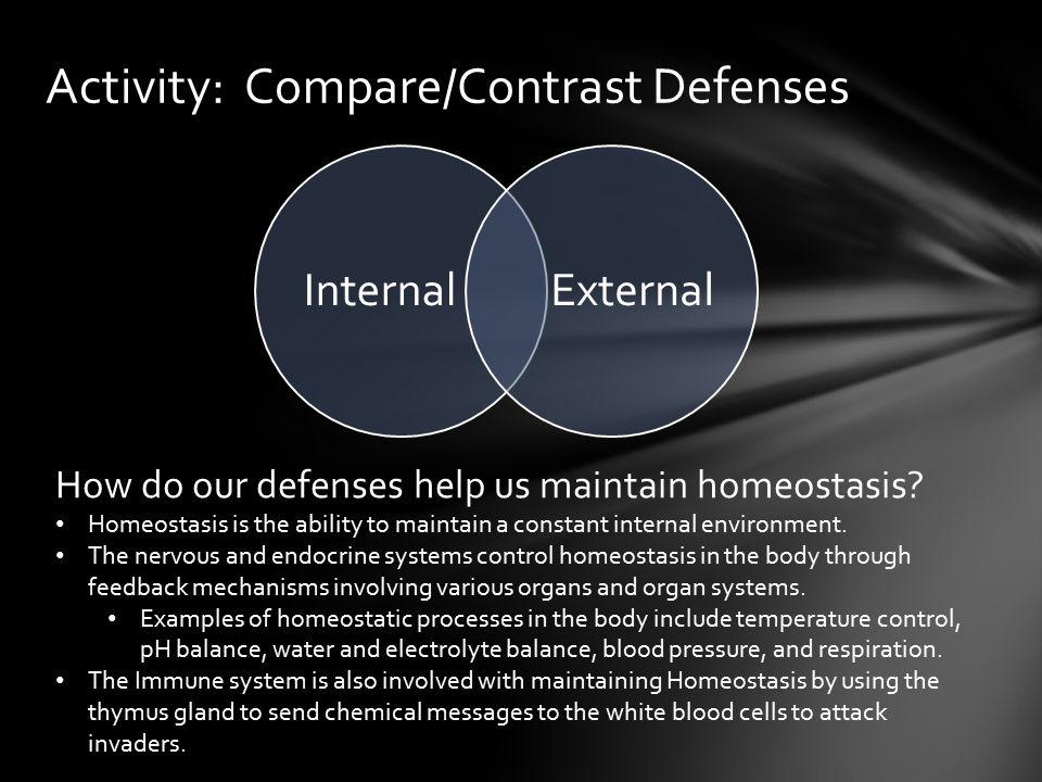 Activity: Compare/Contrast Defenses