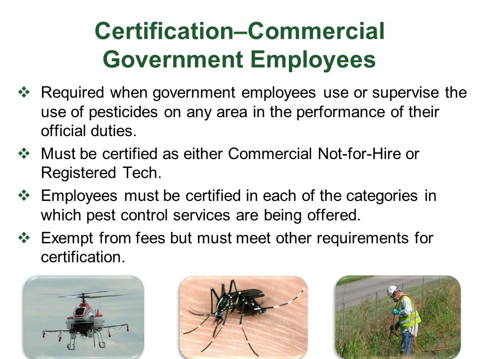 Certification–Commercial Government Employees