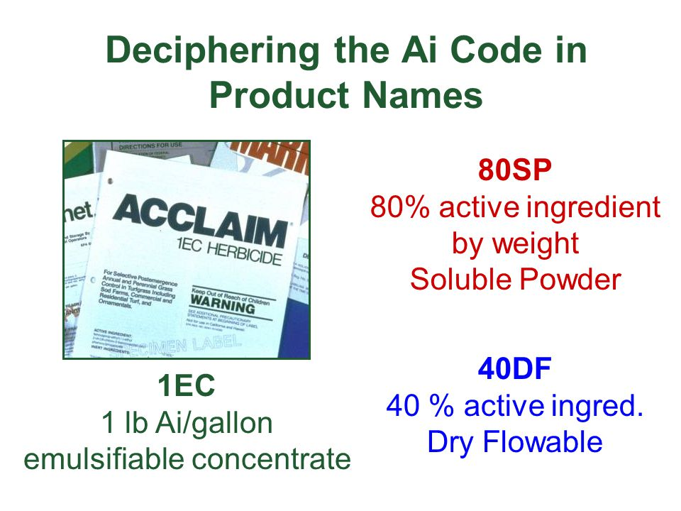 Deciphering the Ai Code in Product Names
