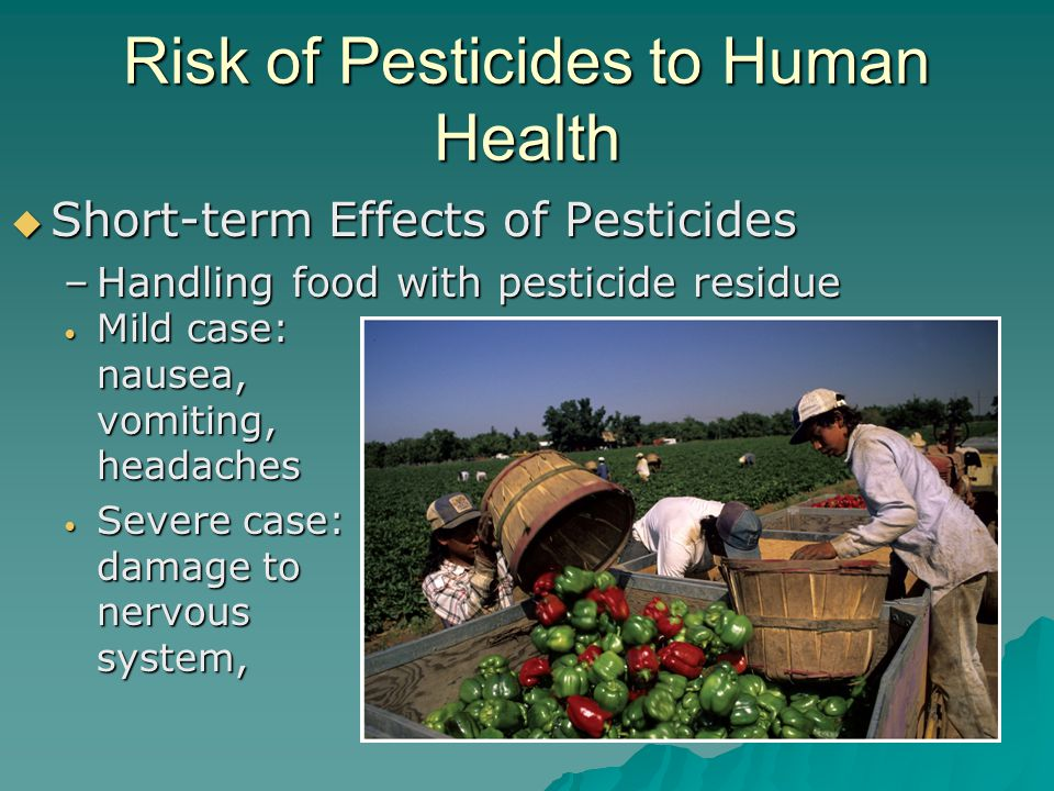 Risk of Pesticides to Human Health
