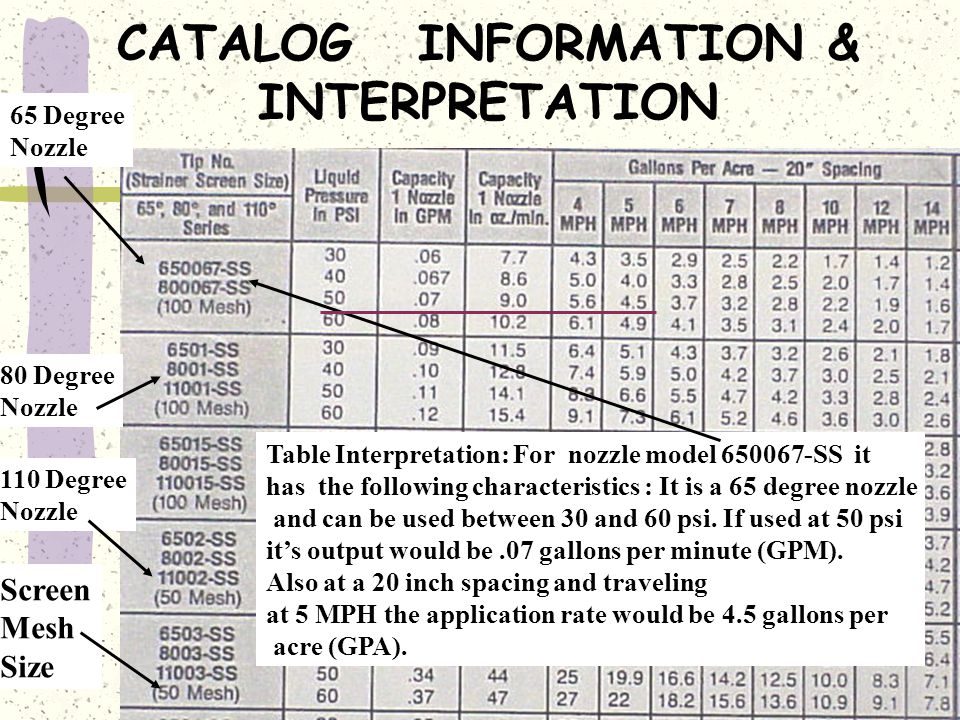 CATALOG INFORMATION & INTERPRETATION