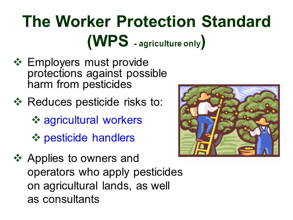 The Worker Protection Standard (WPS - agriculture only)