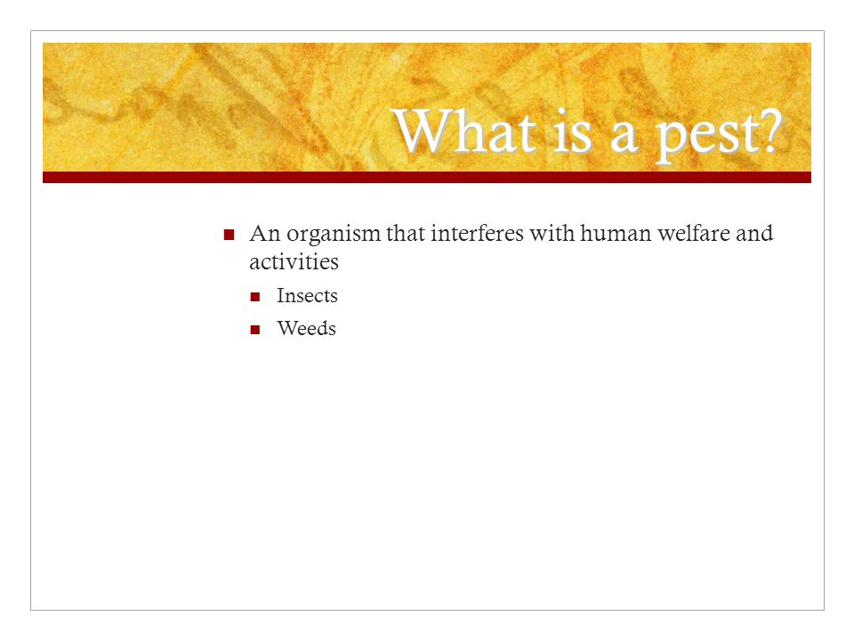 What is a pest An organism that interferes with human welfare and activities Insects Weeds
