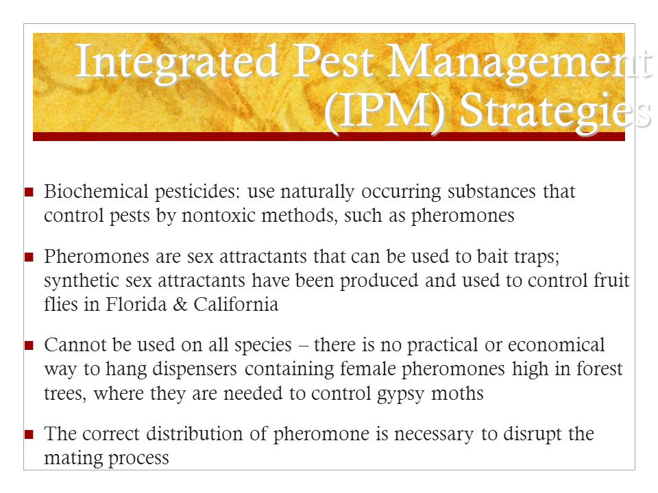 Integrated Pest Management (IPM) Strategies
