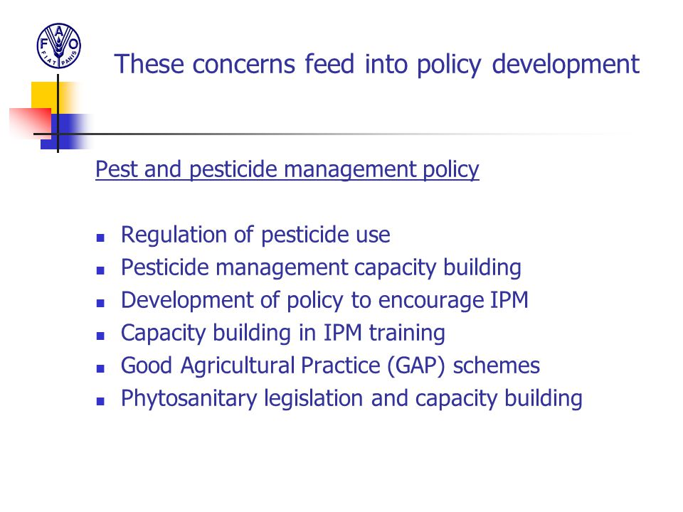 These concerns feed into policy development