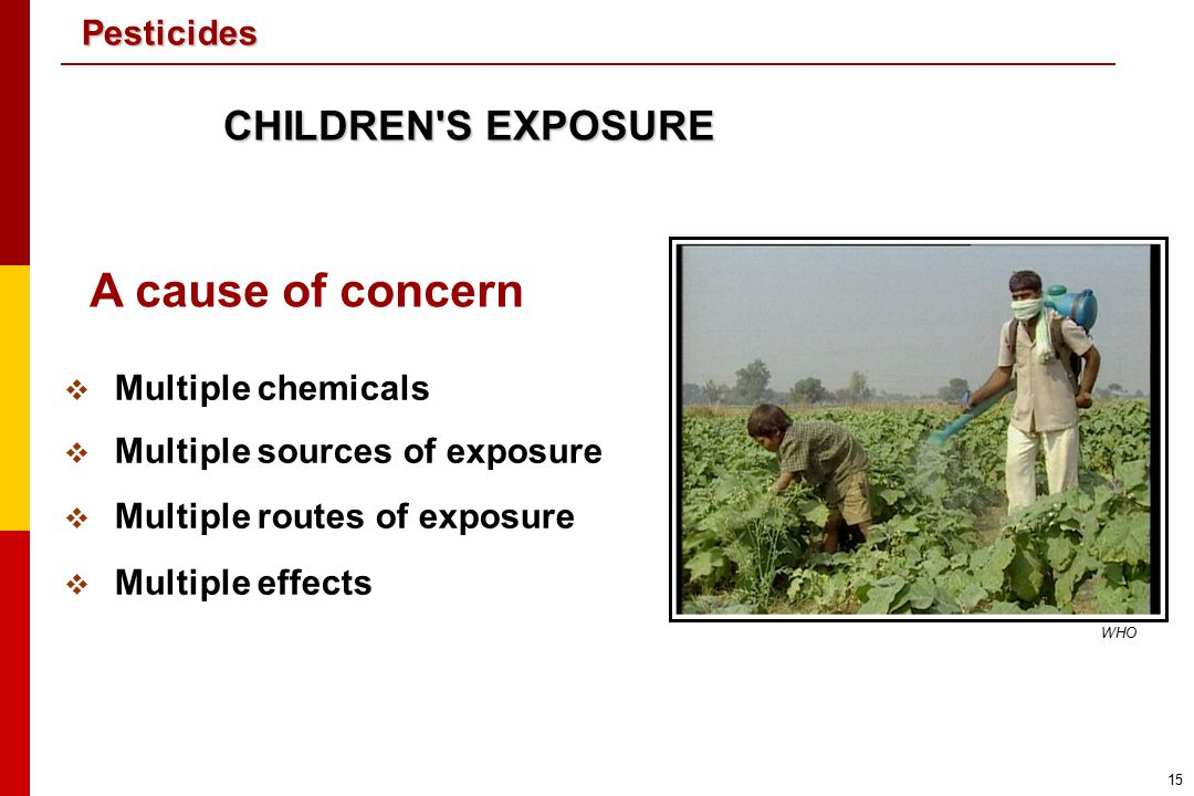 A cause of concern CHILDREN S EXPOSURE Multiple chemicals