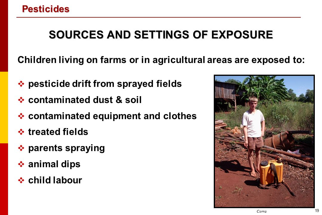 SOURCES AND SETTINGS OF EXPOSURE