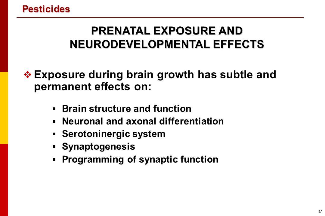 PRENATAL EXPOSURE AND NEURODEVELOPMENTAL EFFECTS