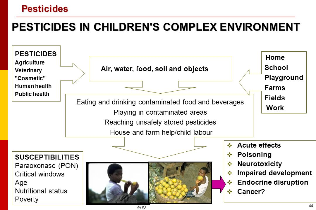 PESTICIDES IN CHILDREN S COMPLEX ENVIRONMENT