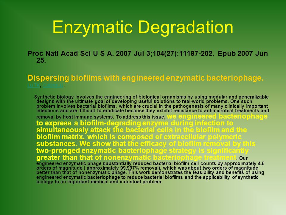 Enzymatic Degradation