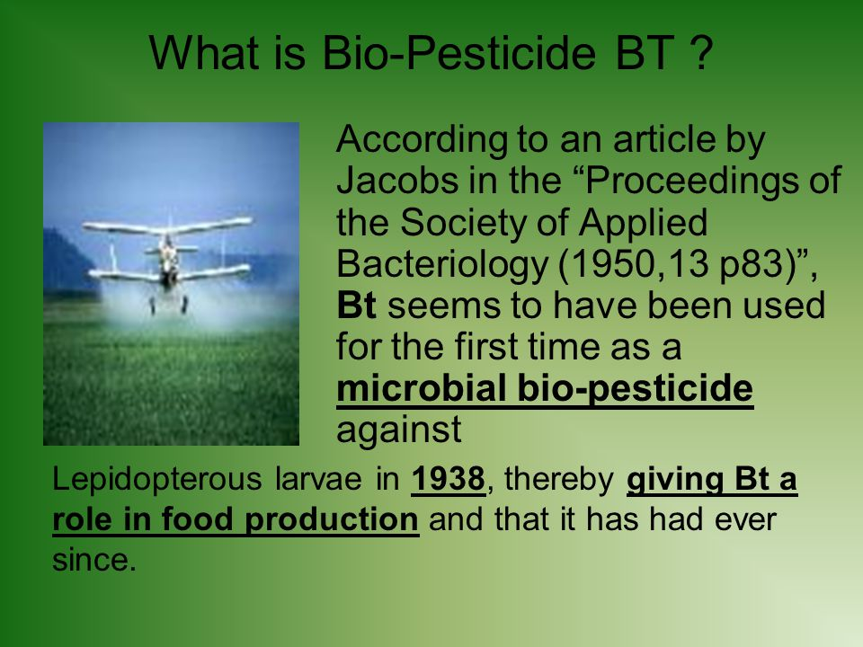 What is Bio-Pesticide BT