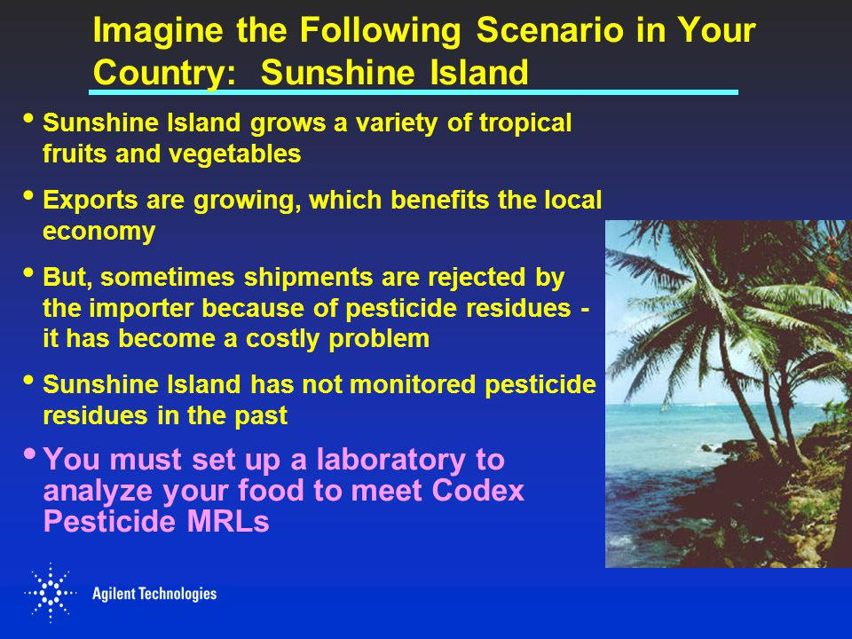 Imagine the Following Scenario in Your Country: Sunshine Island