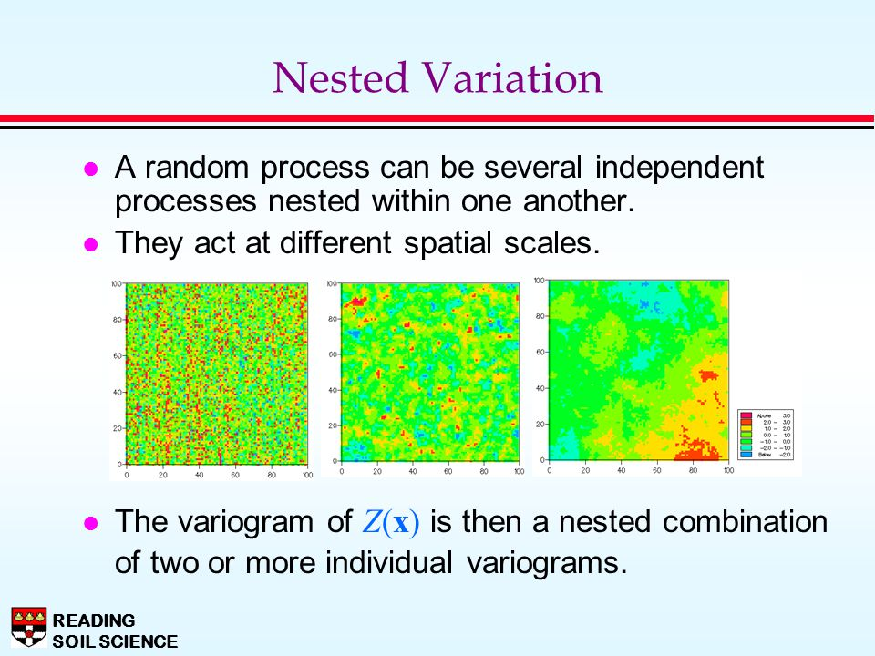 Nested Variation A random process can be several independent processes nested within one another. They act at different spatial scales.