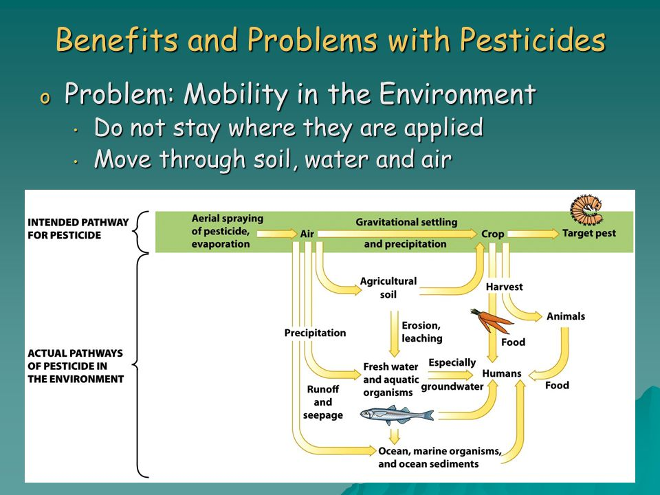 Benefits and Problems with Pesticides