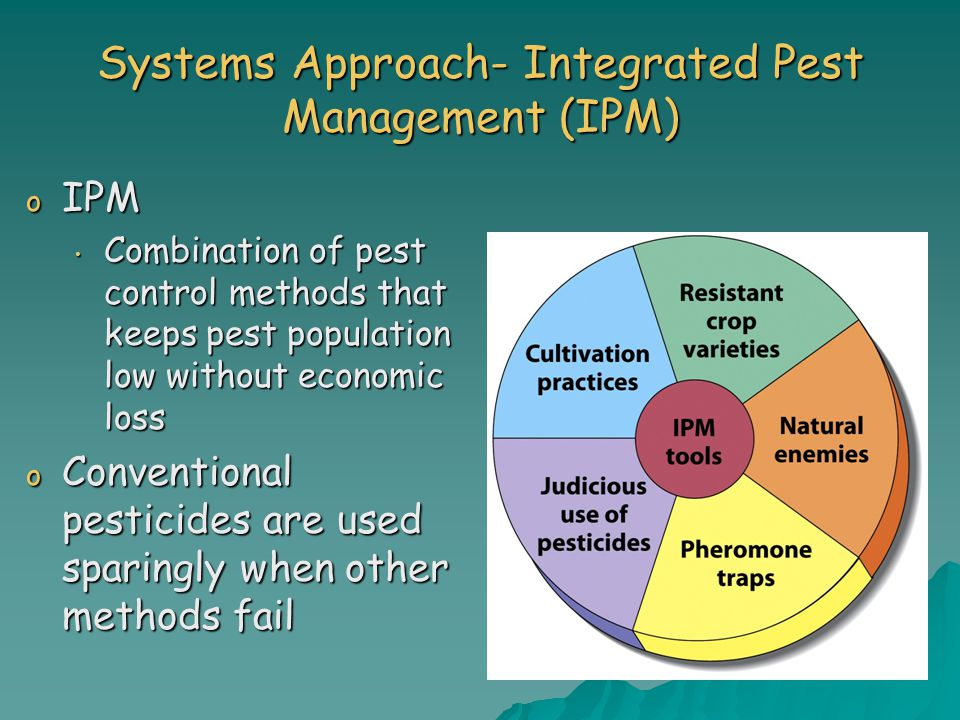 Systems Approach- Integrated Pest Management (IPM)