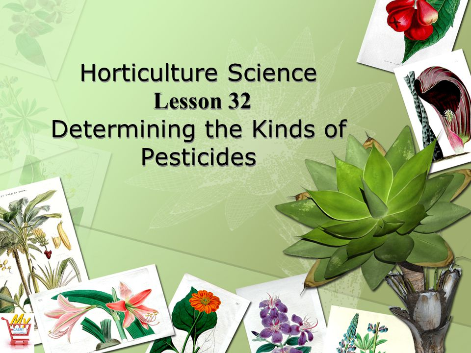 Horticulture Science Lesson 32 Determining the Kinds of Pesticides
