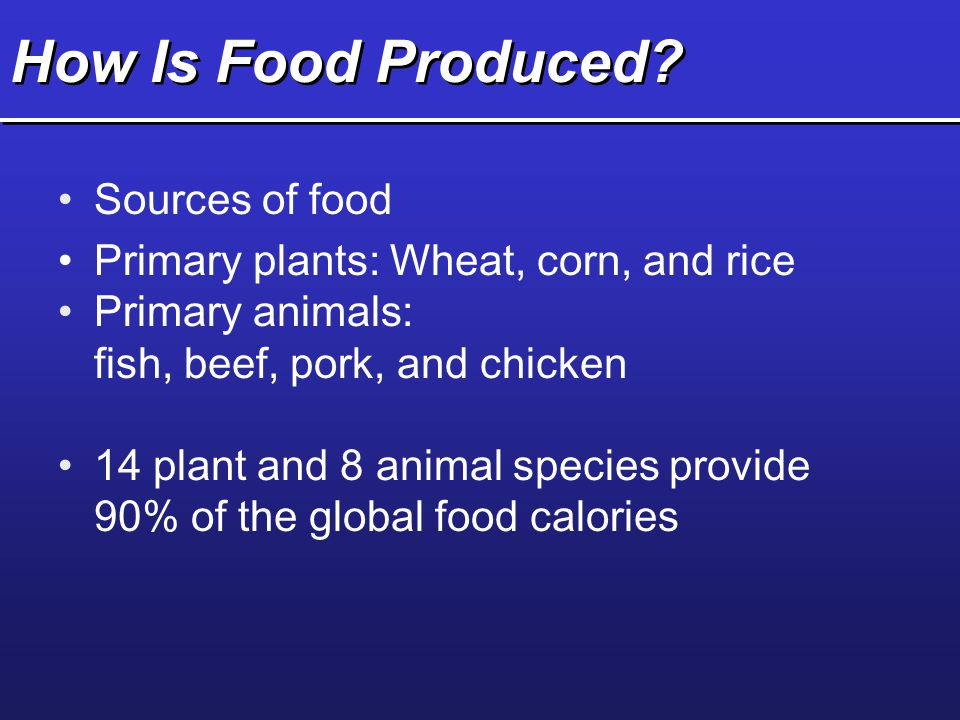 How Is Food Produced Sources of food