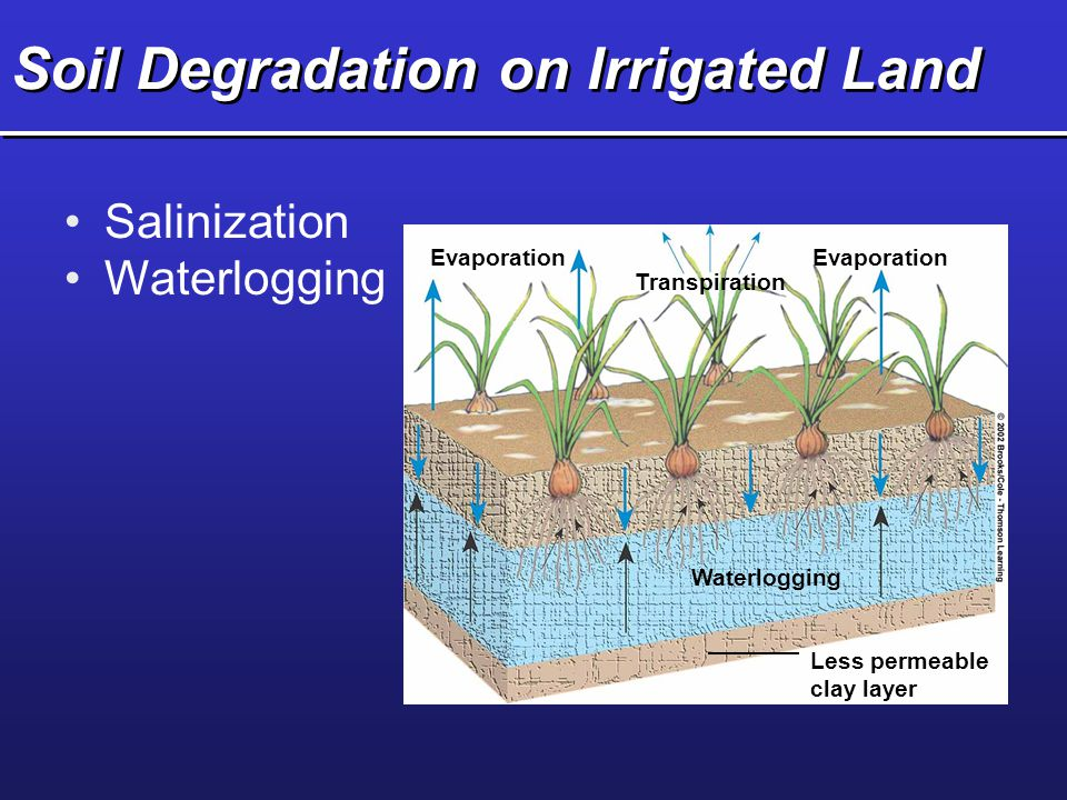 Soil Degradation on Irrigated Land