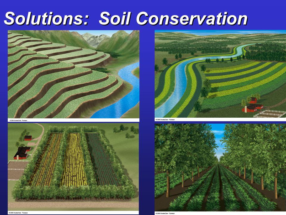 Solutions: Soil Conservation