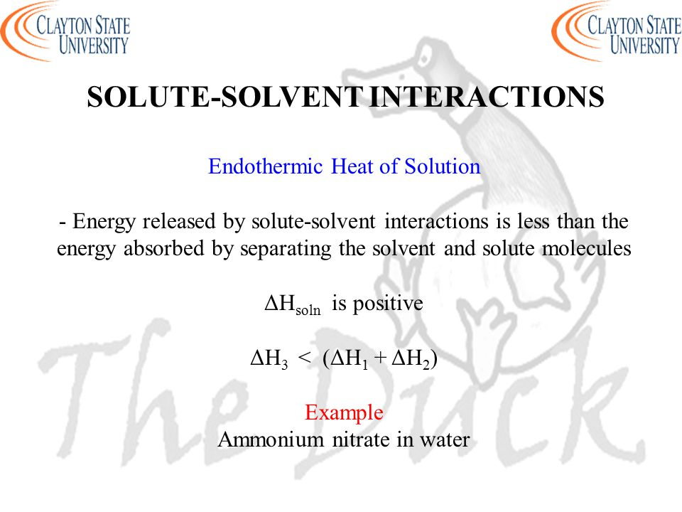 SOLUTE-SOLVENT INTERACTIONS