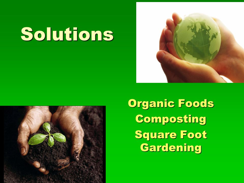 Organic Foods Composting Square Foot Gardening