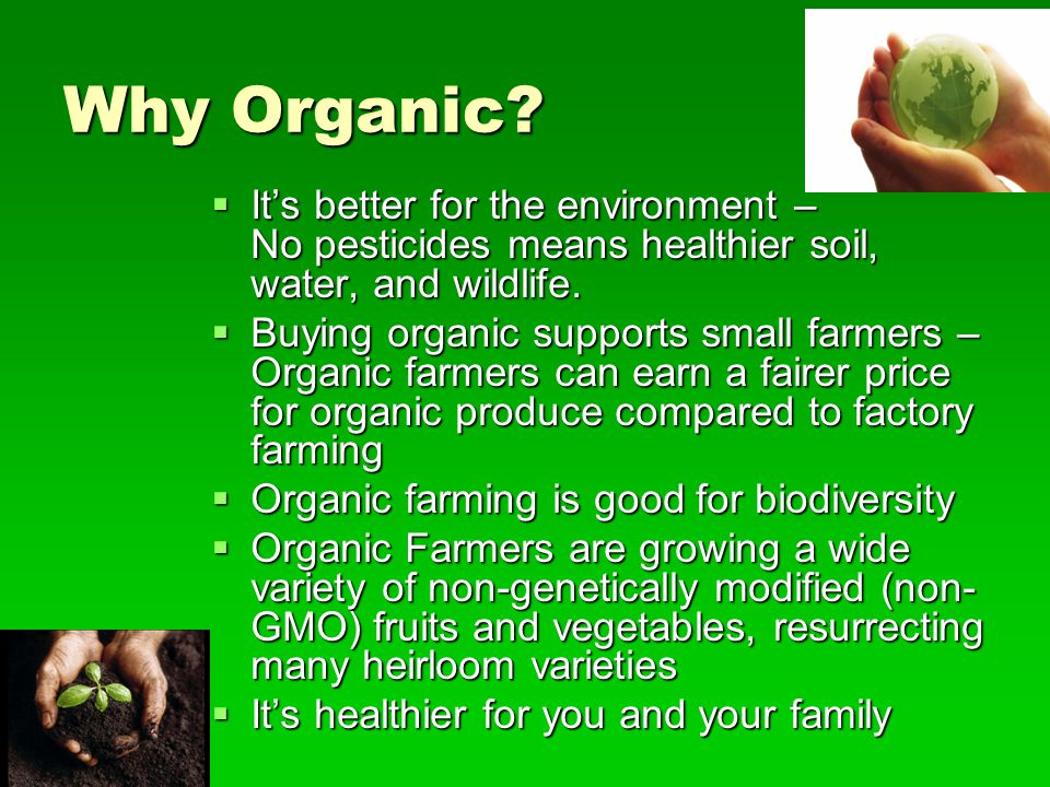 Why Organic It's better for the environment – No pesticides means healthier soil, water, and wildlife.