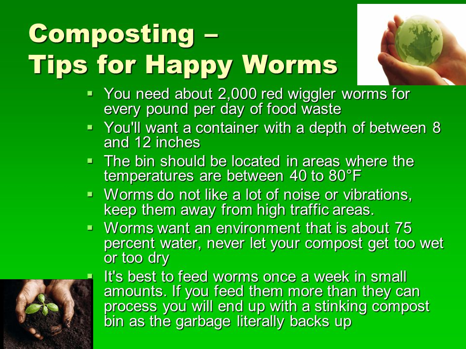 Composting – Tips for Happy Worms