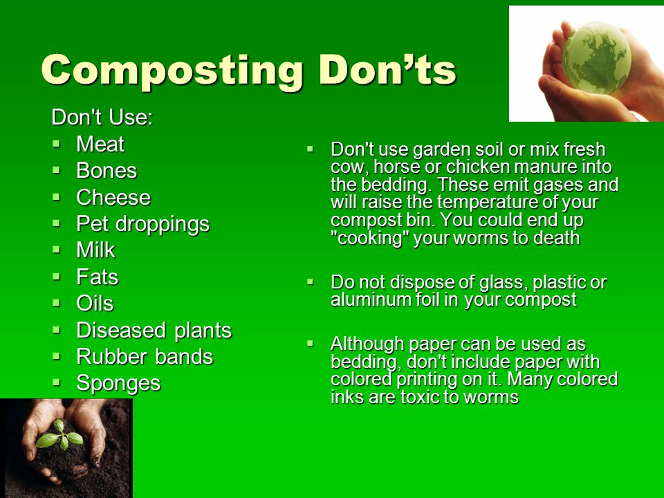 Composting Don'ts Don t Use: Meat Bones Cheese Pet droppings Milk Fats