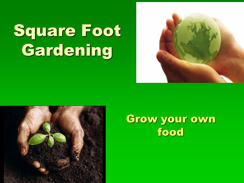 Square Foot Gardening Grow your own food