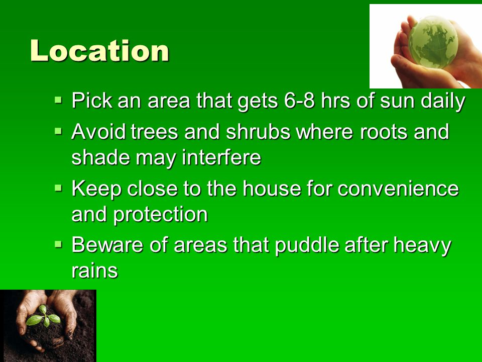 Location Pick an area that gets 6-8 hrs of sun daily