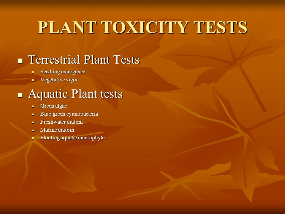 PLANT TOXICITY TESTS Terrestrial Plant Tests Aquatic Plant tests