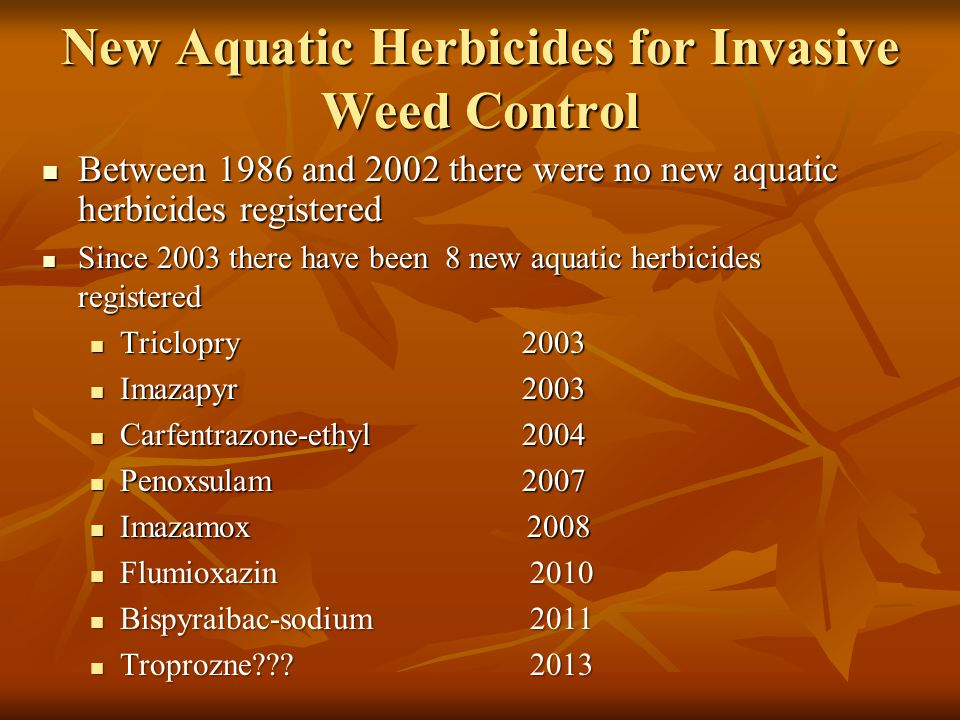 New Aquatic Herbicides for Invasive Weed Control