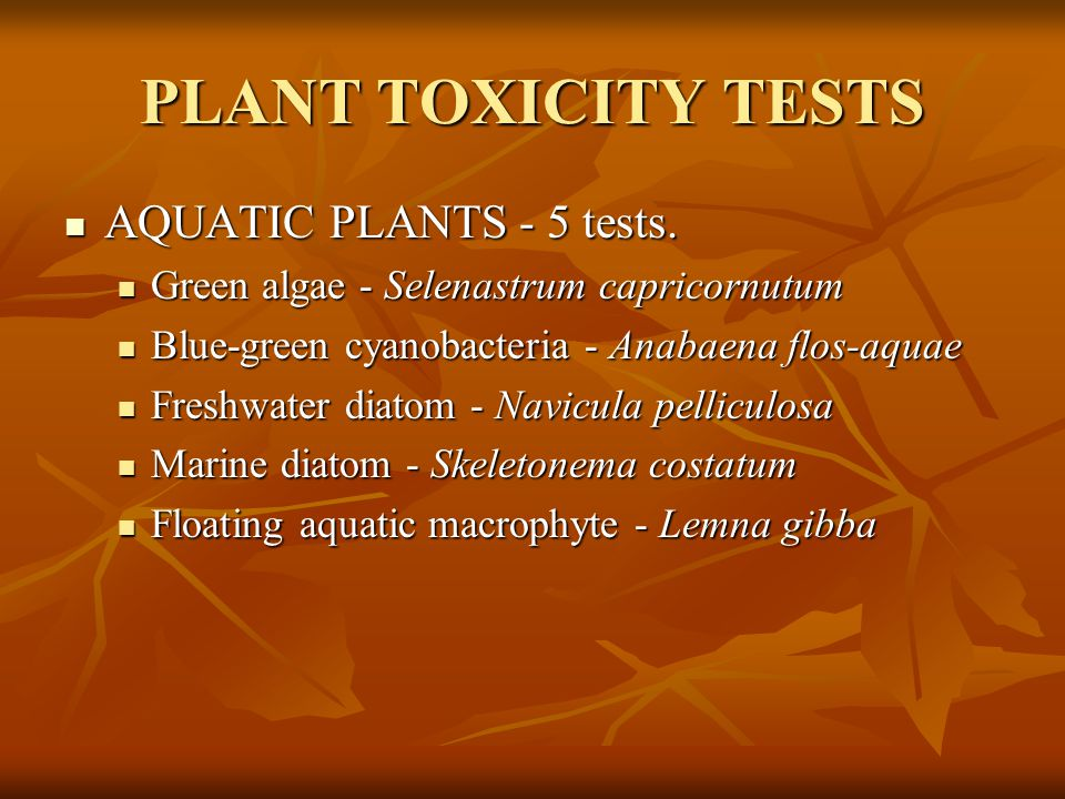 PLANT TOXICITY TESTS AQUATIC PLANTS - 5 tests.
