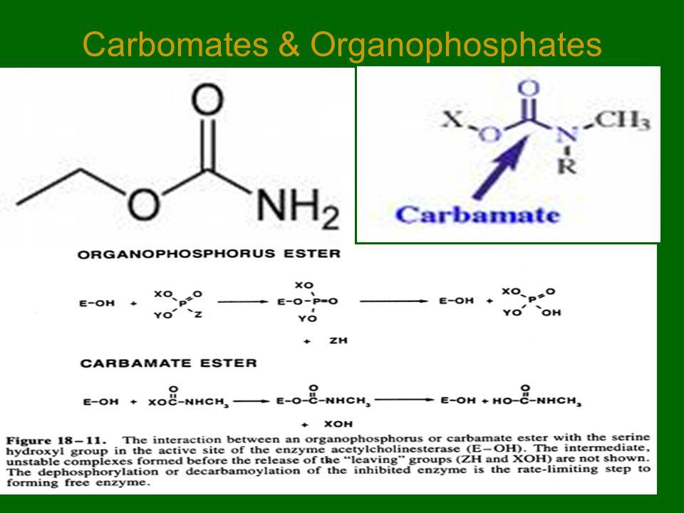 Carbomates & Organophosphates