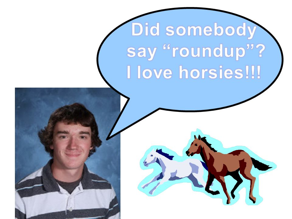 Did somebody say roundup I love horsies!!!