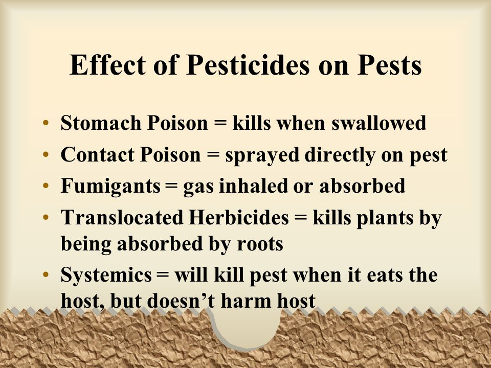 Effect of Pesticides on Pests