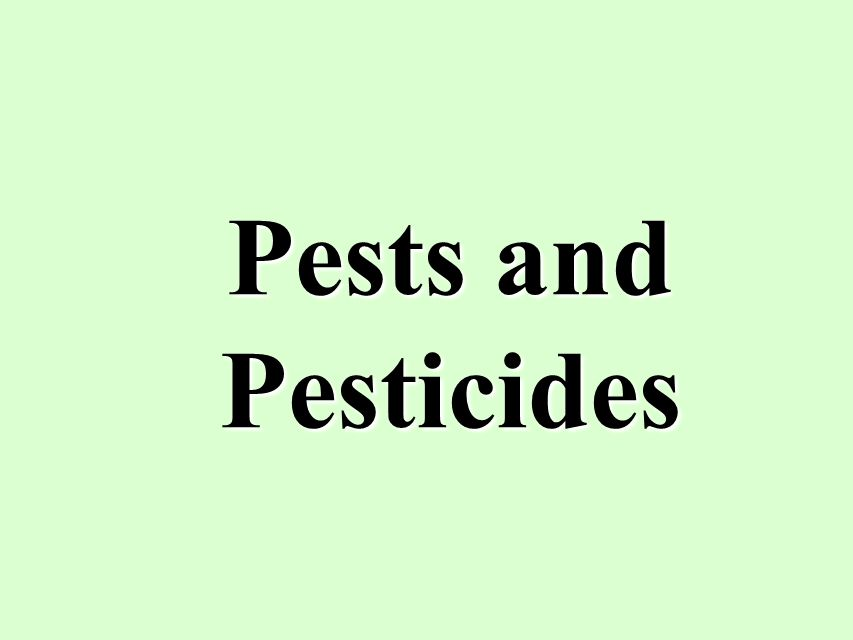 Pests and Pesticides